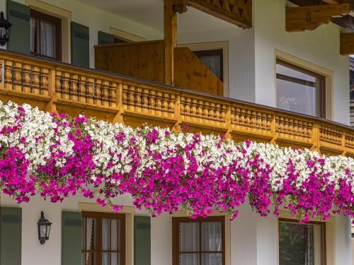 Chiemsee Ferienwohnungen